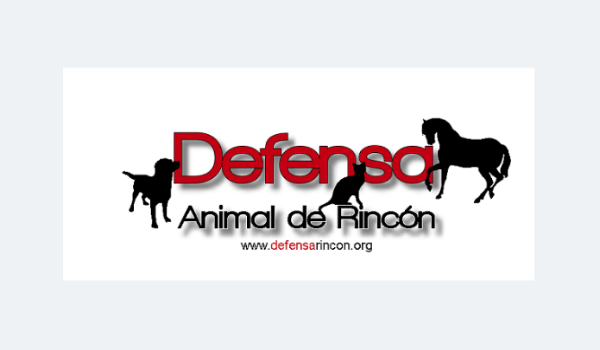 Rescue Diaries: Meet Defensa Animal de Rincón Puerto Rico