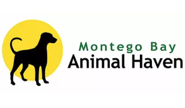 Montego bay animal haven