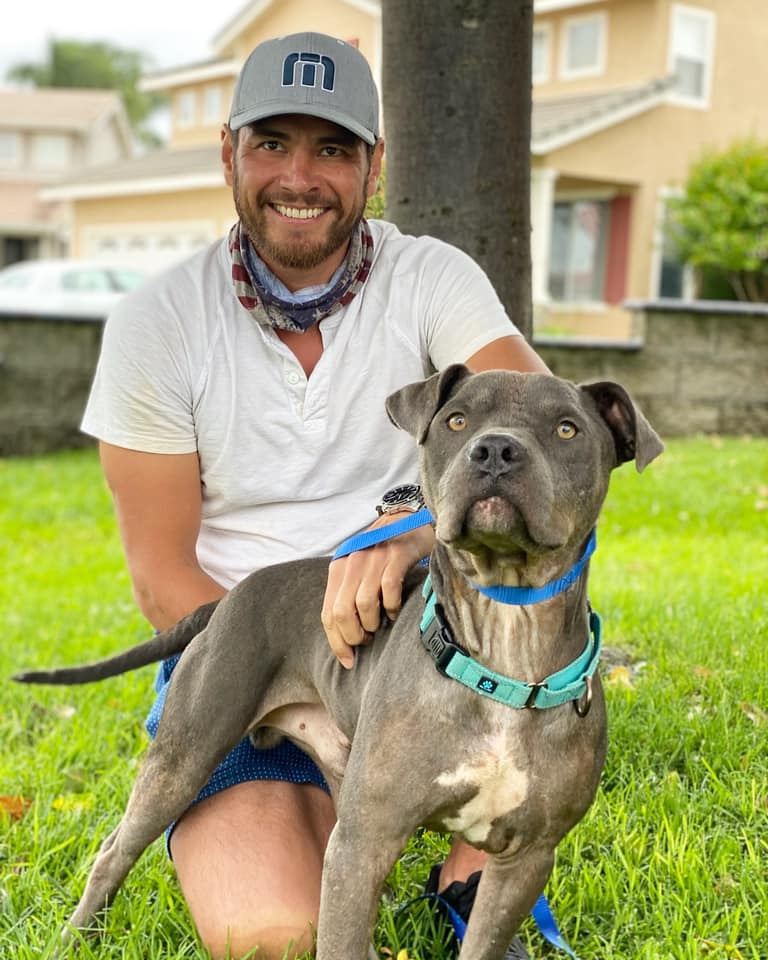 Bait Dog Spent Months Rehabilitating His Body and Soul