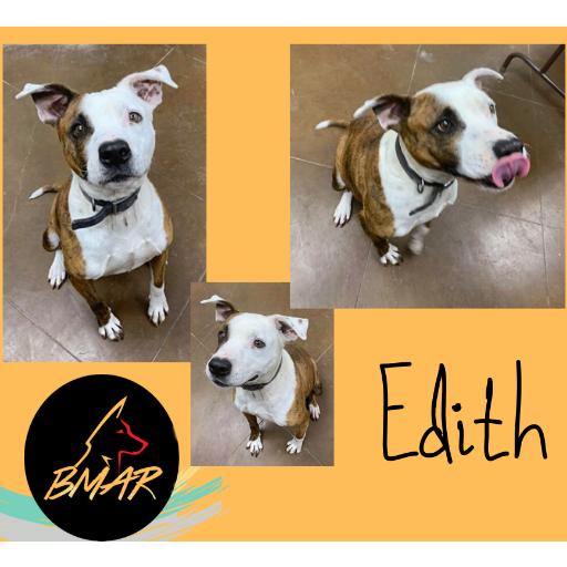 Phoenix aka Edith