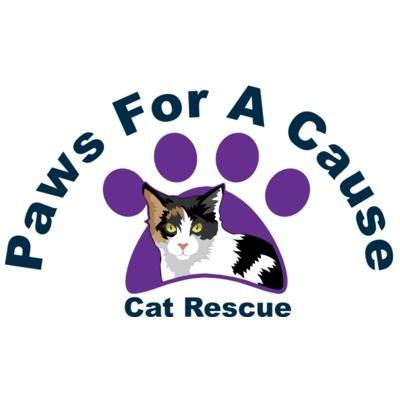 Paws For A Cause Cat Rescue