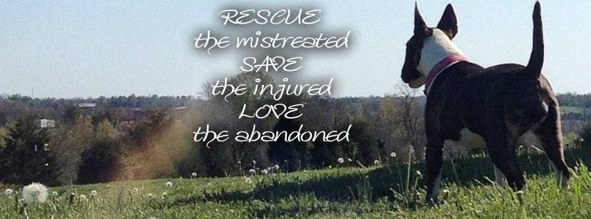 Let Them Live Rescue