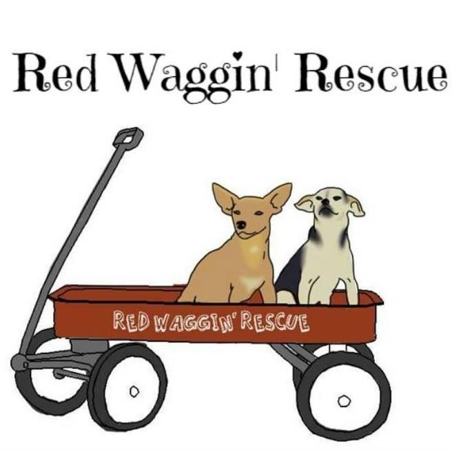 Red Waggin Rescue