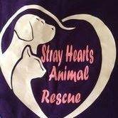 Stray Hearts Animal Rescue, Inc.