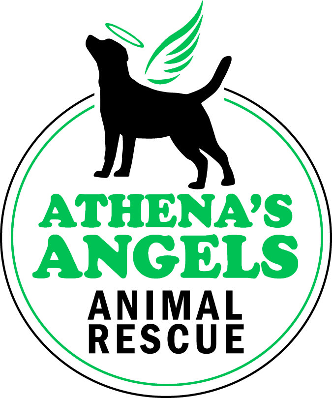 Athena's Angels Rescue