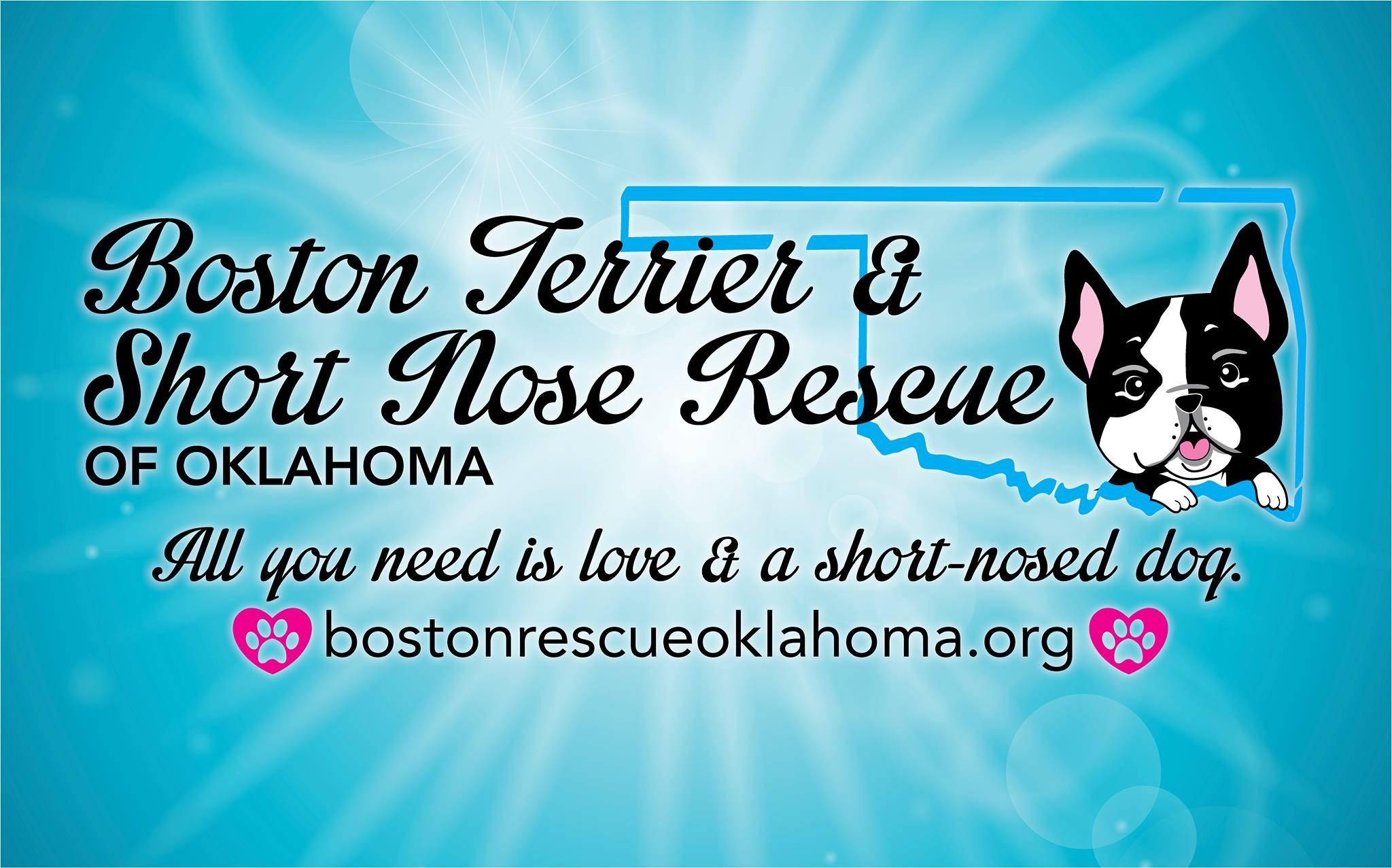Boston Terrier & Short Nose Rescue of Oklahoma