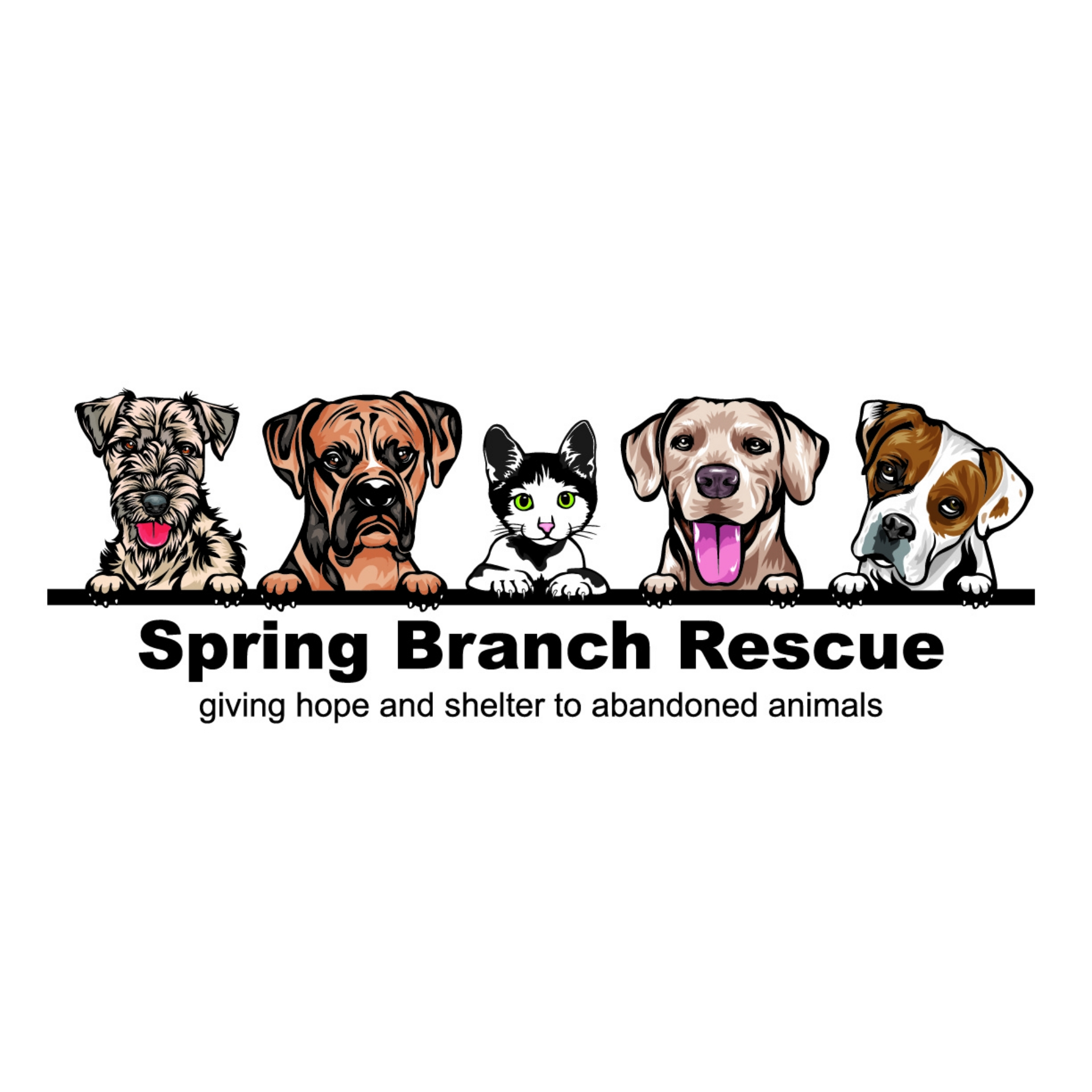 Spring Branch Rescue