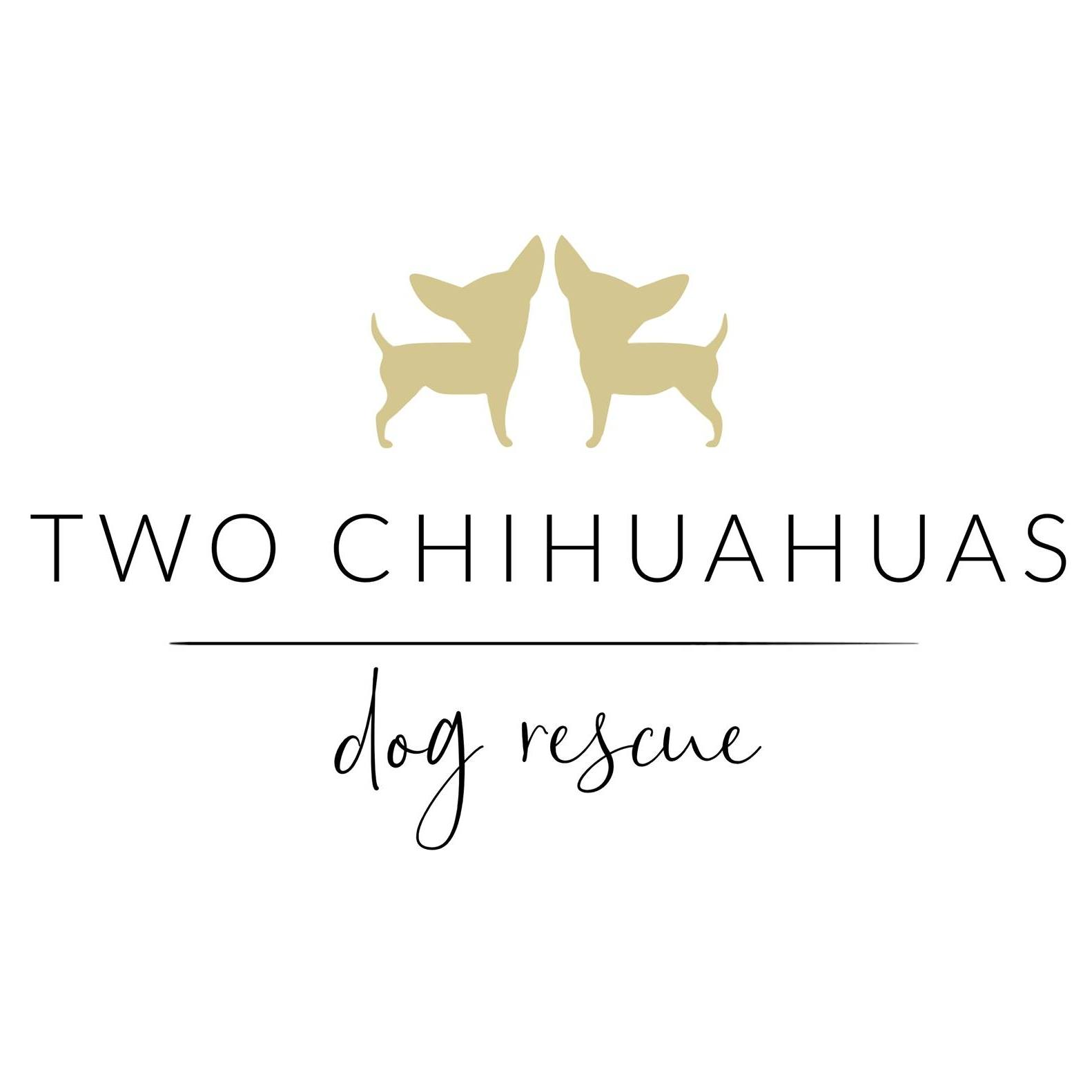 Two Chihuahuas Dog Rescue
