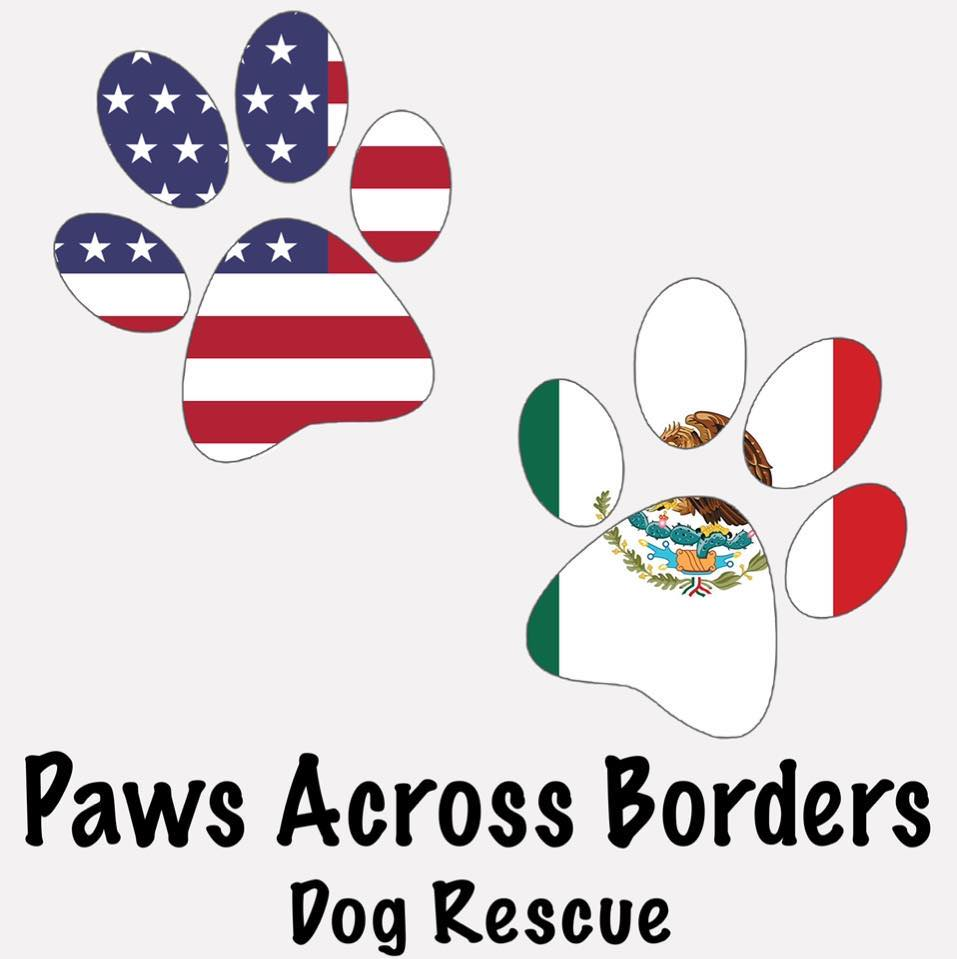 Paws Across Borders Dog Rescue