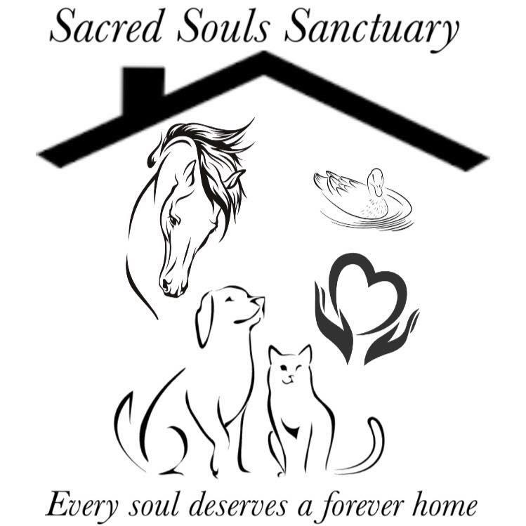 Sacred Souls Sanctuary