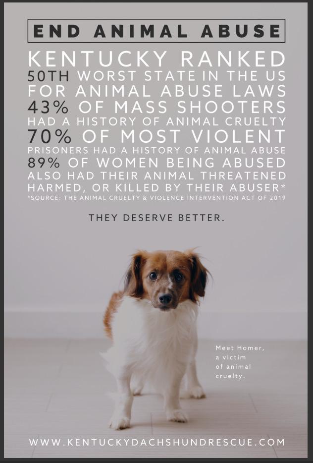 end animal abuse